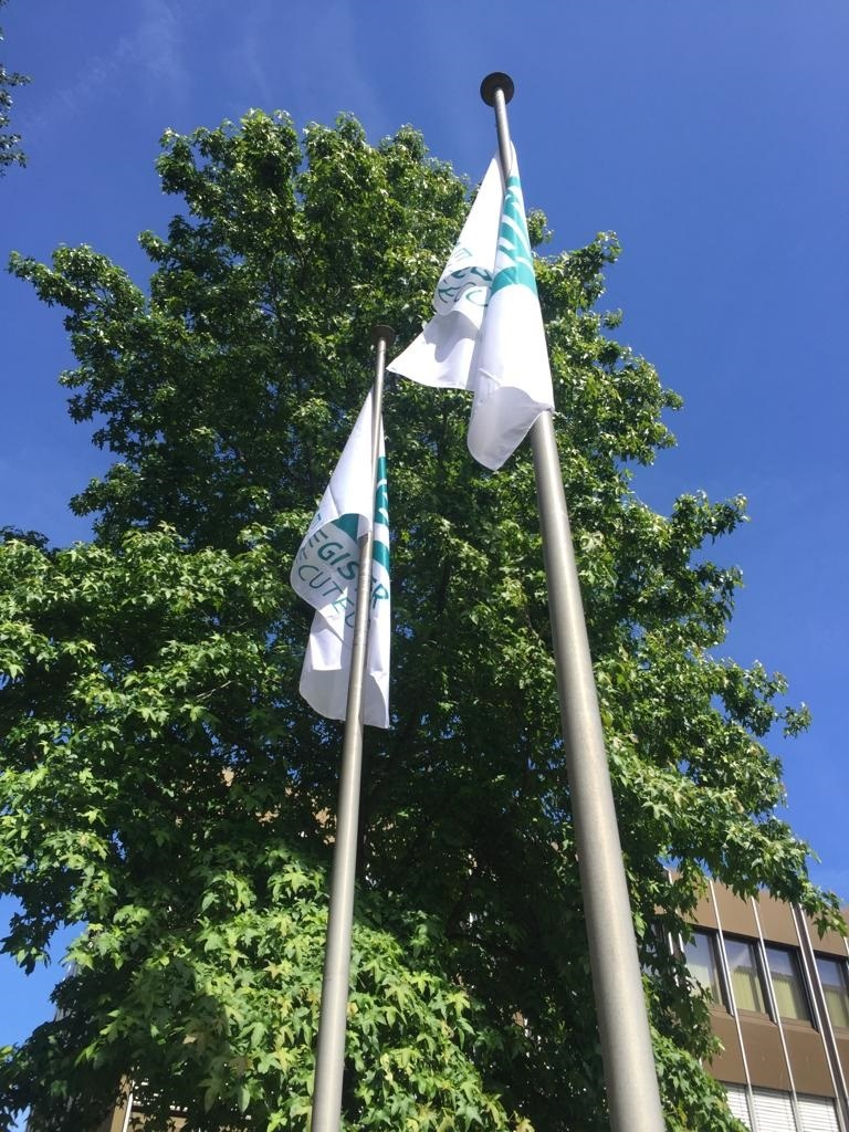 Register Executeur vlaggen